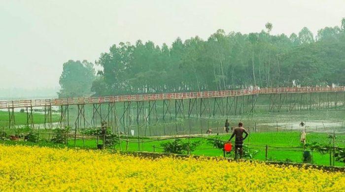 গ্রামবাসী মিলে নির্মাণ করলো দৃষ্টিনন্দন কাঠের সেতু