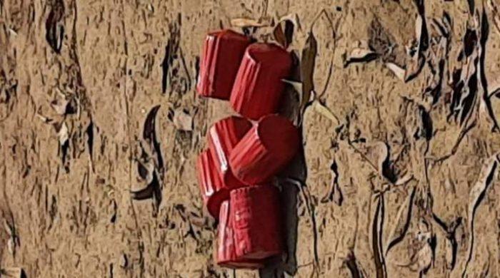 শাহজাদপুরে ৭টি সাদৃশ্য হাতবোমা ও ৩১টি ঢাল উদ্ধার